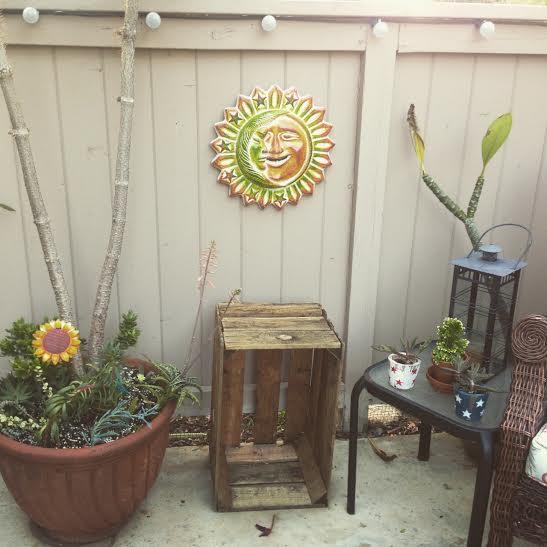 Garden day 17